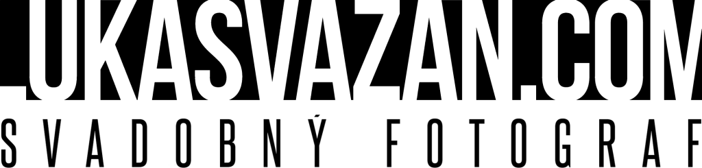 lv_vector_logo_black-1